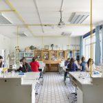 Liceo Tron - Schio - offerta formativa